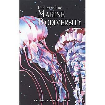 Biologische Vielfalt der Meere zu verstehen