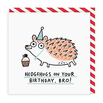oh Deer Hedgehugs On Your Birthday Bro Square Card oh Deer Hedgehugs On Your Birthday Bro Square Card oh Deer Hedgehugs On Your Birthday Bro Square Card Oh De