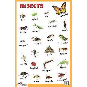 Insects Educational Chart by Pegasus - 9788131938898 Book