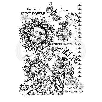Woodware Clear Stamp - Girassol Vintage