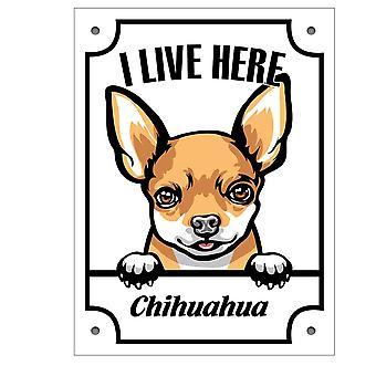 Placă de metal Chihuahua Kikande semn de câine