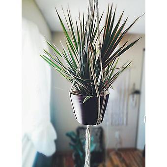 Vintage-inspireret Macrame Plante hanger
