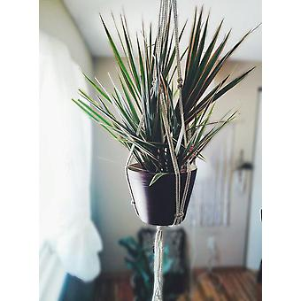 Vintage-inspirierte Makramee Pflanze Aufhänger