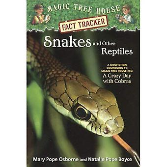 Schlangen und andere Reptilien (magische Baumhaus Research Guides (Pb))