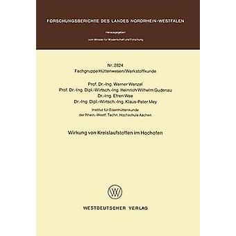 Wirkung von Kreislaufstoffen im Hochofen af Wenzel & Werner