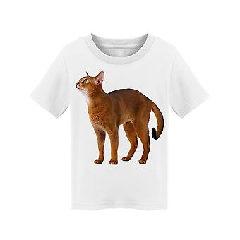 Tender Abyssinian Cat  Tee Toddler's -Image by Shutterstock