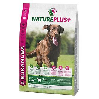 Eukanuba Nature Plus+ Adult Large Cordero y Arroz (Dogs , Dog Food , Dry Food)