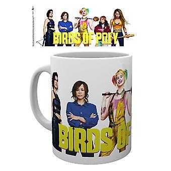 الطيور من مجموعة القدح الجارحة