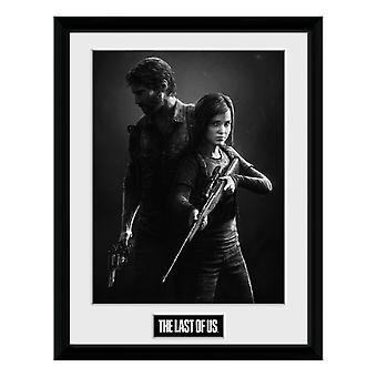 The Last of Us, Plate - Black and White No. 2