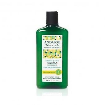 Andalou - girassol & citrino brilhante Shine Shampoo 340ml