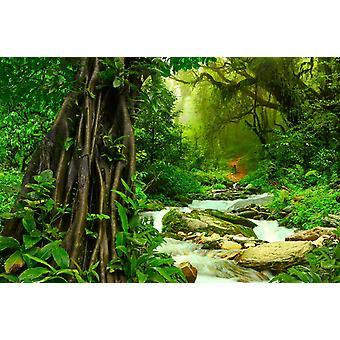 Tapetmaleri Dype tropiske jungler i Asia