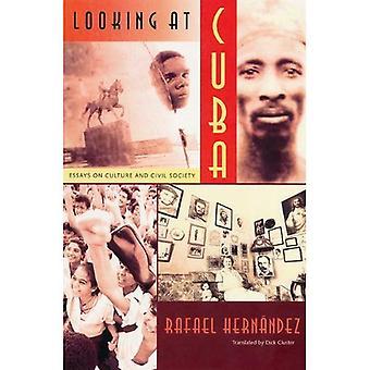 Guardando la pagina di Cuba: saggi sulla cultura e la società civile