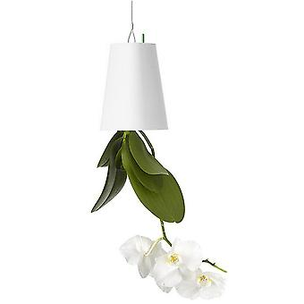 TRIXES Inverted Hanging Upside Down Flower Plant Pot