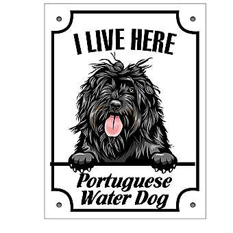 Plåtskylt portuguese water dog Kikande hund skylt
