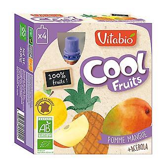 Gourd Cool Fruits Apple Mango Pineapple ORGANIC 4 units of 90g