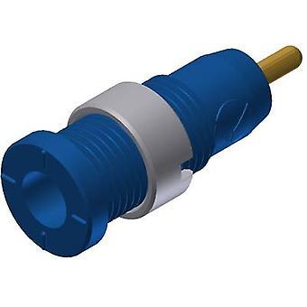 SKS Hirschmann MSEB 2630 S 1,9 bezpieczeństwa Au gniazdo Socket, pionowe pionowe średnica sworznia: 2 mm niebieski 1 szt.