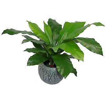 60cm Bushy Large Artificial Birds Nest Fern Plant