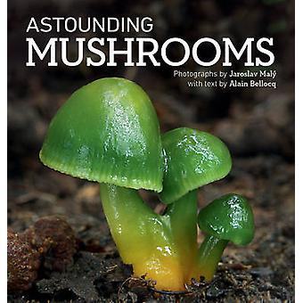 Verbazingwekkende Mushrooms door Alain Bellocq - Jaroslav Maly - 9781770855748