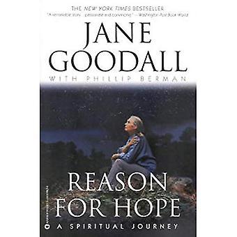 Raisons d'espérer: un itinéraire spirituel