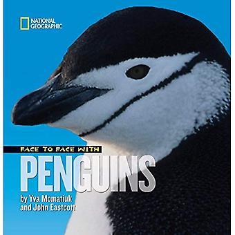 Ansikte mot ansikte med pingviner