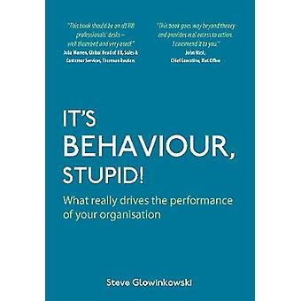 Its Behaviour  Stupid What really drives the performance of your organisation by Glowinkowski & Steve