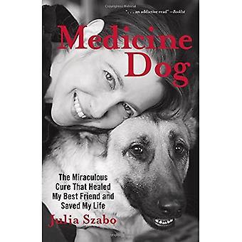 Medizin-Hund: Die wundersame Heilung, die heilte mein besten Freund und mein Leben gerettet