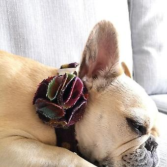 Dog collar flower accessory - Multispot Wine