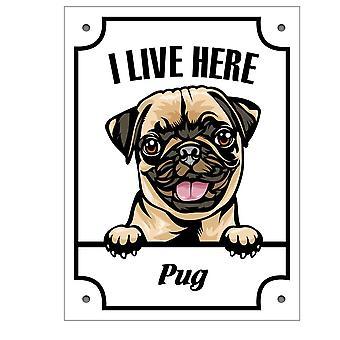 Plaque d'étain Pug Kikande signe de chien