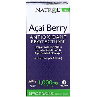 Natrol, Acai Berry, 1 000 mg, 75 Veggie-kepsar