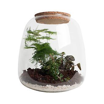 Ecosysteem 'Groene veren' met verlichting - Hoogte 25 - Diameter pot 24