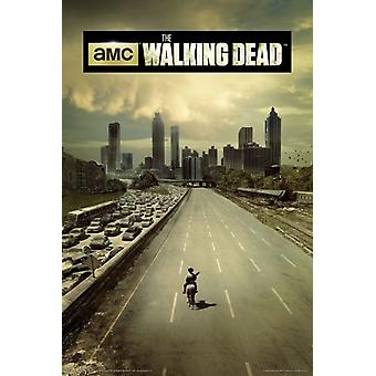 Walking Dead - Highway Poster Poster Print by