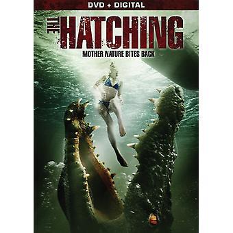 Hatching [DVD] USA import