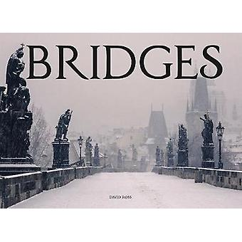 Bridges by David Ross - 9781782745761 Book