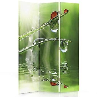 Room Divider, 3 Panels, Double-Sided, Rotatable 360 ??° Canvas, Ladybird On A Grass