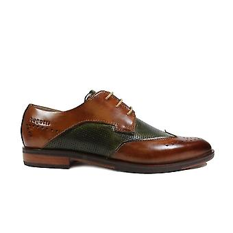 Bugatti 311-89101-6371 Tan & Green Leather Mens Lace Up Brogue Shoes