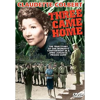 Three Come Home (1950) [DVD] USA import