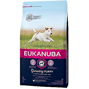 Eukanuba Groeiende Puppy Kleine Ras Kip - 2kg