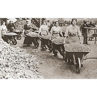 Kvinder at skubbe trillebøre og arbejder som medhjælpere mens mændene kæmpede væk under første verdenskrig fra historien om halvfjerds skelsættende år udgivet af Odhams tryk 1937 PosterPrint