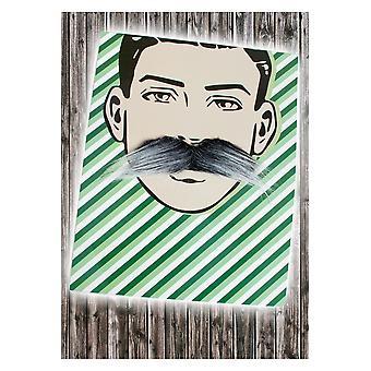 Barbes et moustaches gris moustache