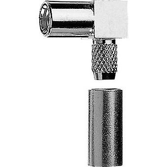 SMB-liitin pistorasia, kulmassa 50 Ω Telegärtner J01161A0271 1 PCs()