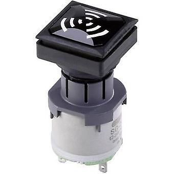 Schlegel OKJNSG+SG-24V Alarm sounder Noise emission: 85 dB Voltage: 24 V Continuous acoustic signal 1 pc(s)