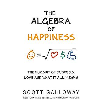 The Algebra of Happiness - The pursuit of success - love and what it a