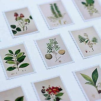 Botaniska Porto stil stämpel dekaler 45 bitar Craft Scrapbooking