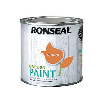 Ronseal Garden Paint Sunburst 250ml RSLGPSB250