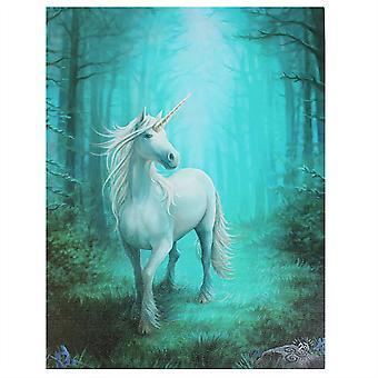 19x25cm Forest Unicorn Canvas Plaque by Anne Stokes