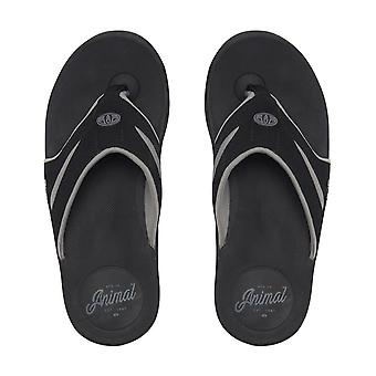 Animal Fader Flip Flops in Black
