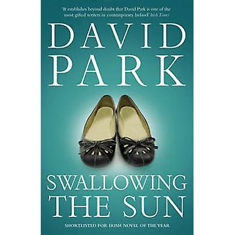 Swallowing the Sun by Park & David
