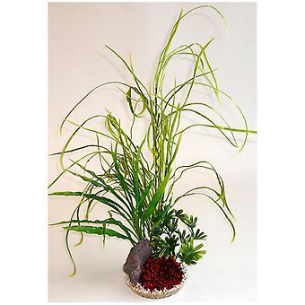 Sydeco Lily Grass Rock Sydeco (Poissons , Décoration , Plantes artificielles)