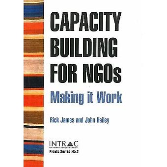 Capacity Building for NGOs: Making it Work