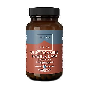 Glucosamine, Boswelia and Msm Complex 50 capsules